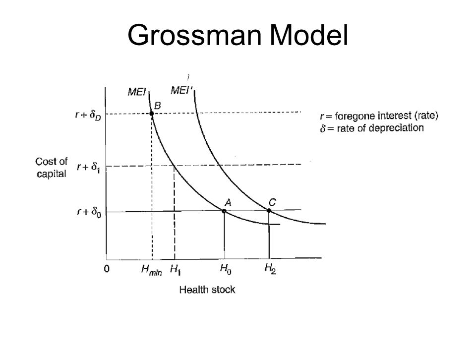 Health and health care demand ppt video online download grossman model r d is gross investment ccuart Choice Image