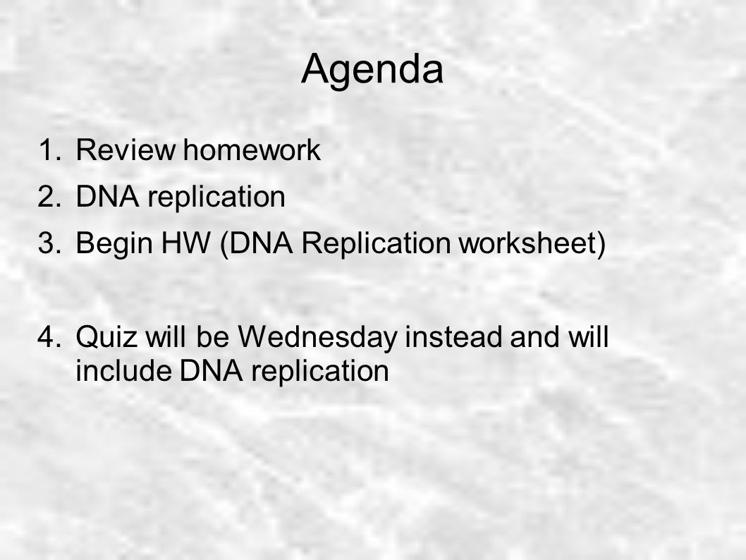 Agenda Review homework DNA replication ppt download – Dna Replication Worksheet