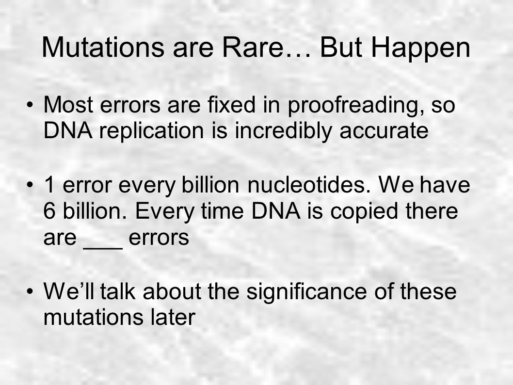 worksheet Dna Replication Review Worksheet agenda review homework dna replication ppt video online download 28 mutations