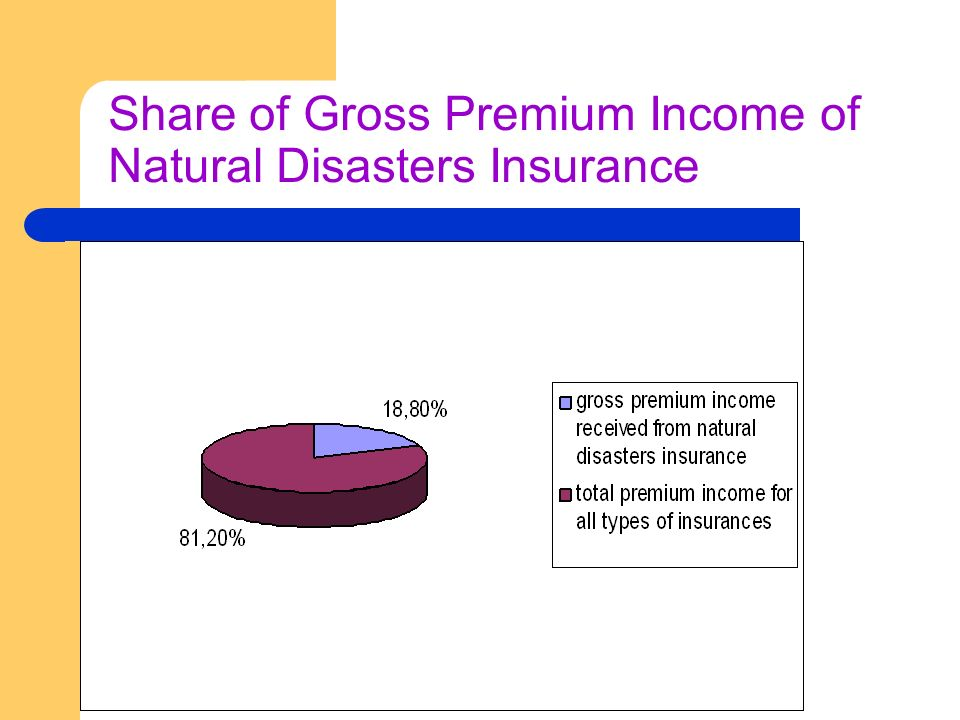 Share of Gross Premium Income of Natural Disasters Insurance