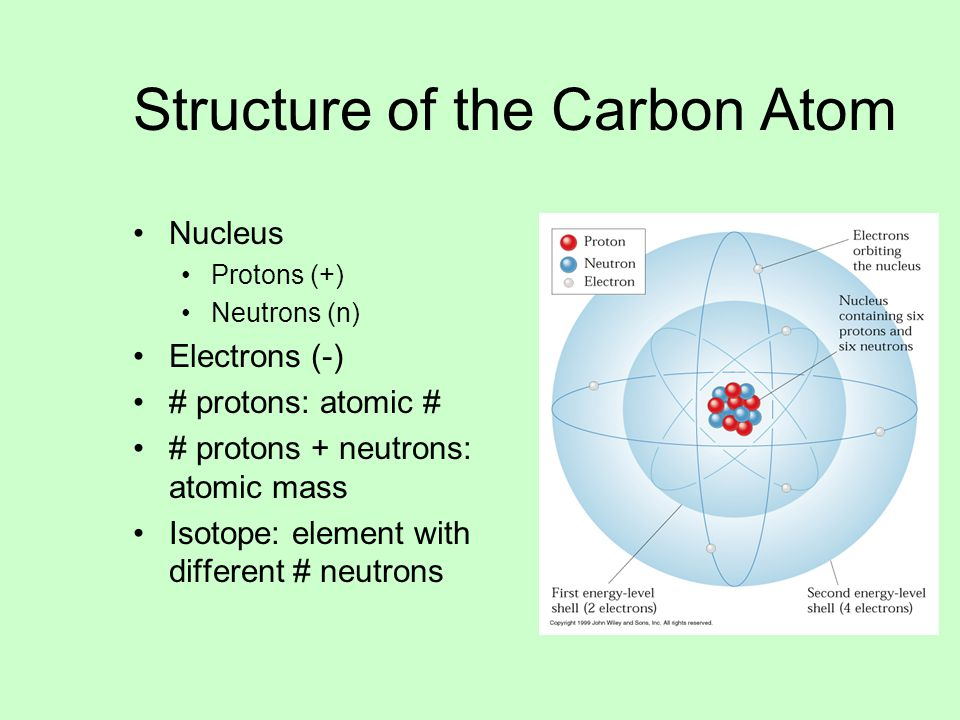 about carbon dating method and radioactive isotopes their uses