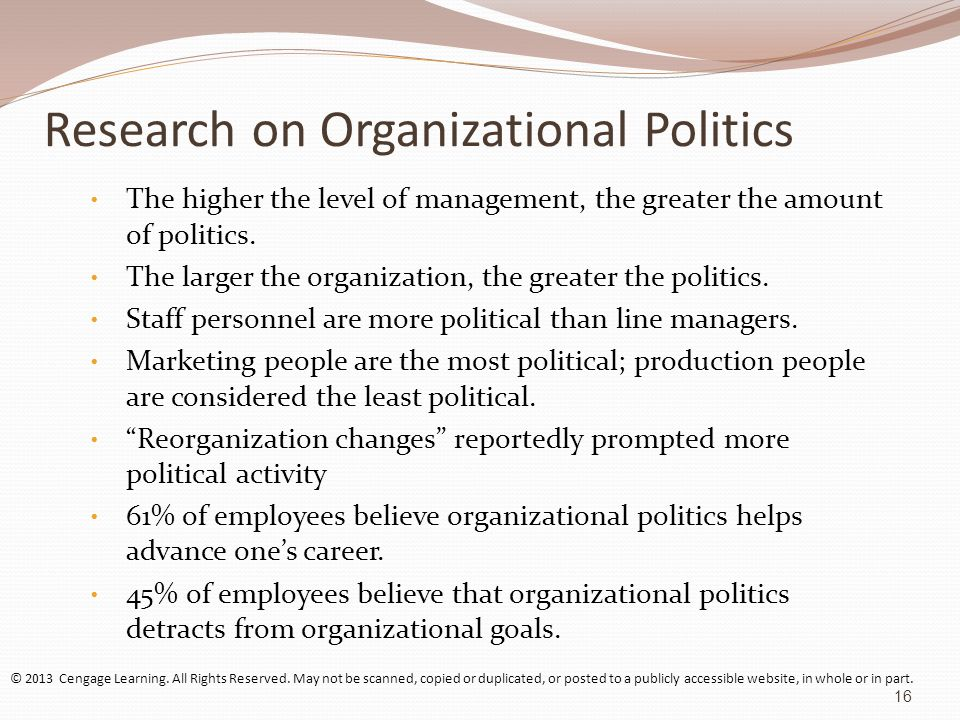 Organizations as Political Systems Essay