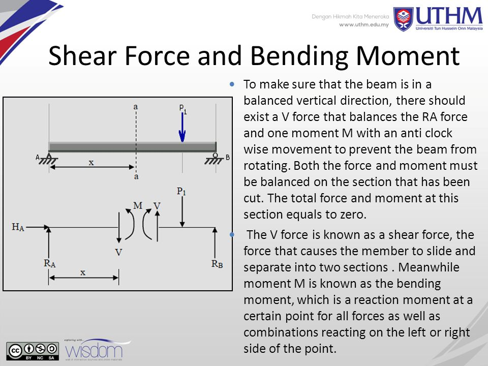 shear force and bending moment pdf