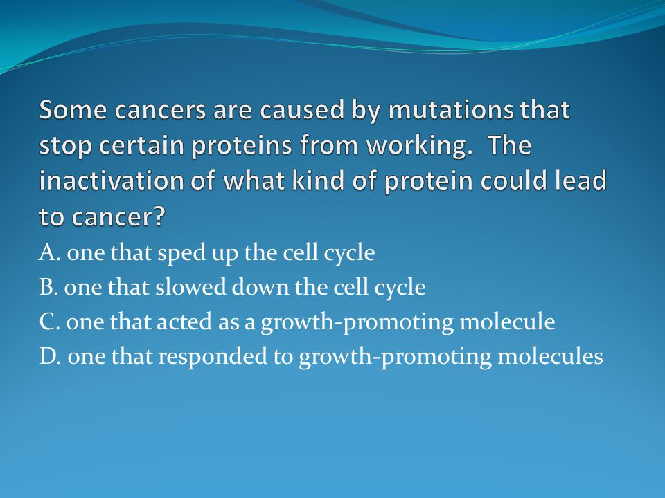 Some cancers are caused by mutations that stop certain proteins from working. The inactivation of what kind of protein could lead to cancer