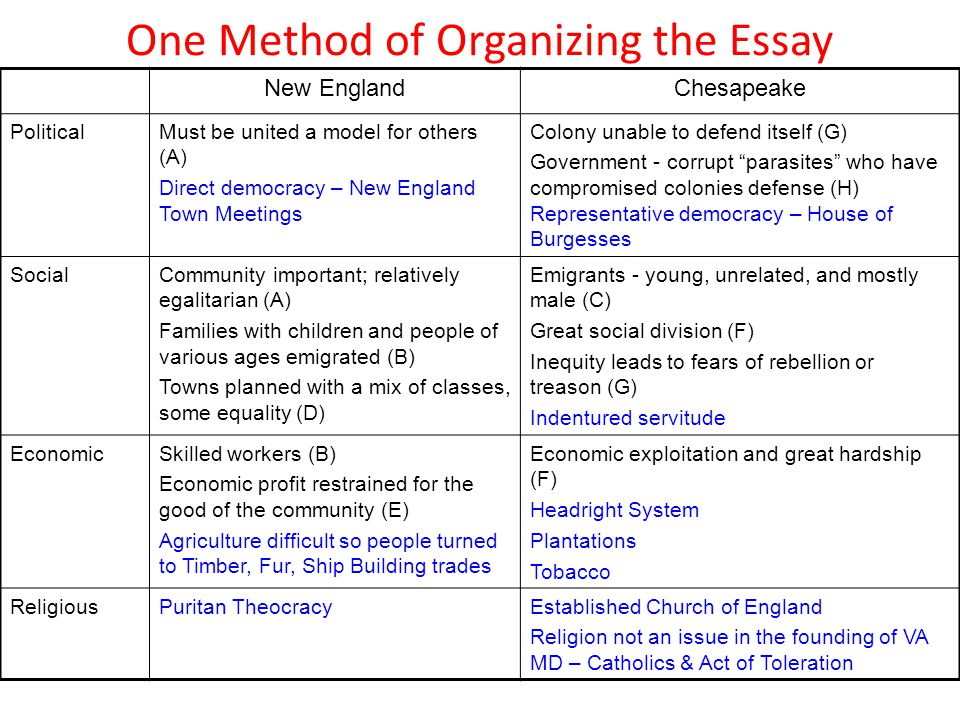 Civilizations Of The Americas Essay Format