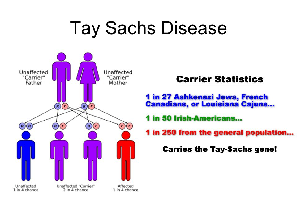 tay sachs disease essay example Need writing tay-sachs disease discovery essay use our essay writing services or get access to database of 119 free essays samples about tay-sachs disease discovery.