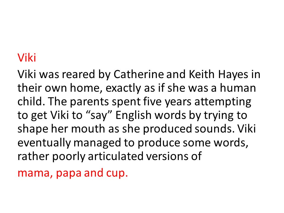 Viki Viki was reared by Catherine and Keith Hayes in their own home, exactly as if she was a human child.