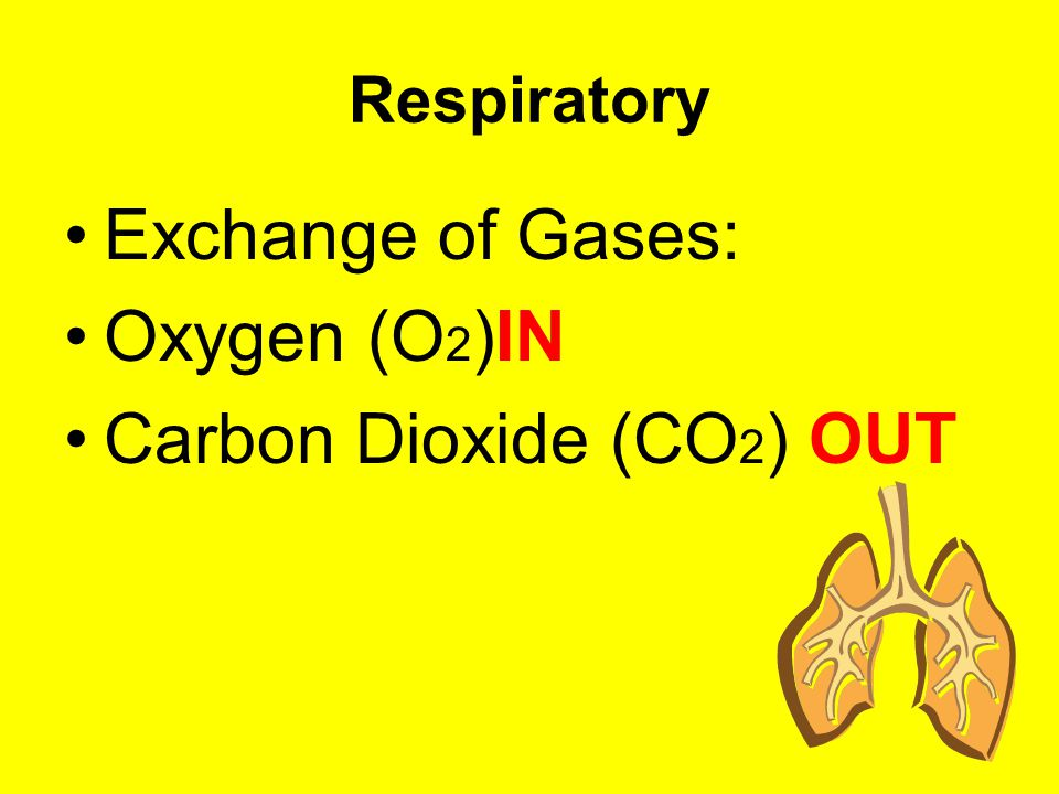 Carbon Dioxide (CO2) OUT
