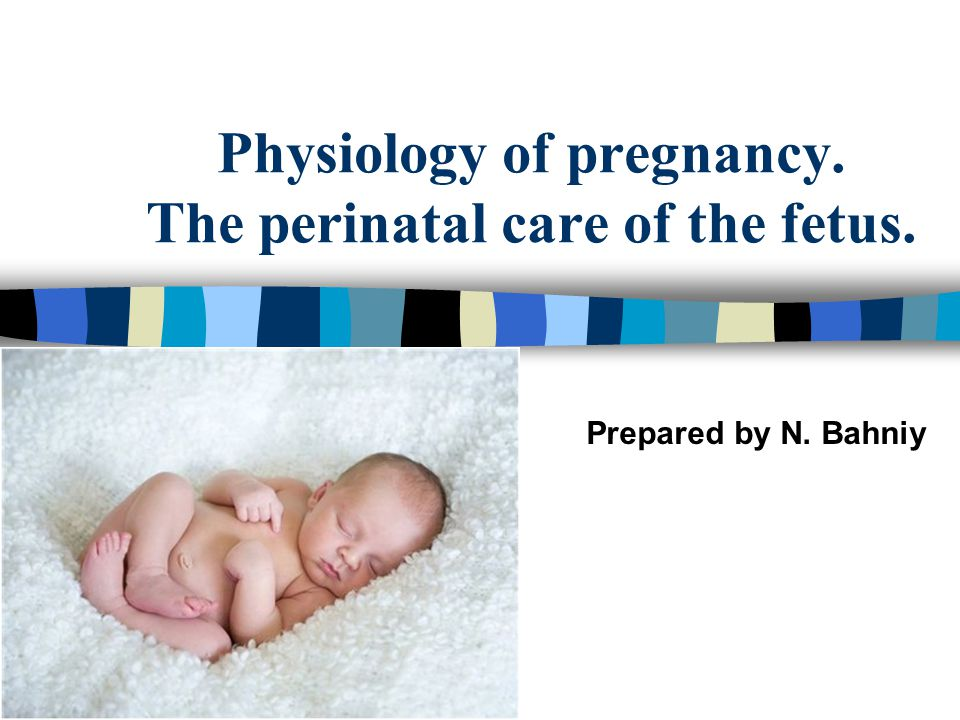 Physiology of pregnancy. The perinatal care of the fetus. - ppt ...