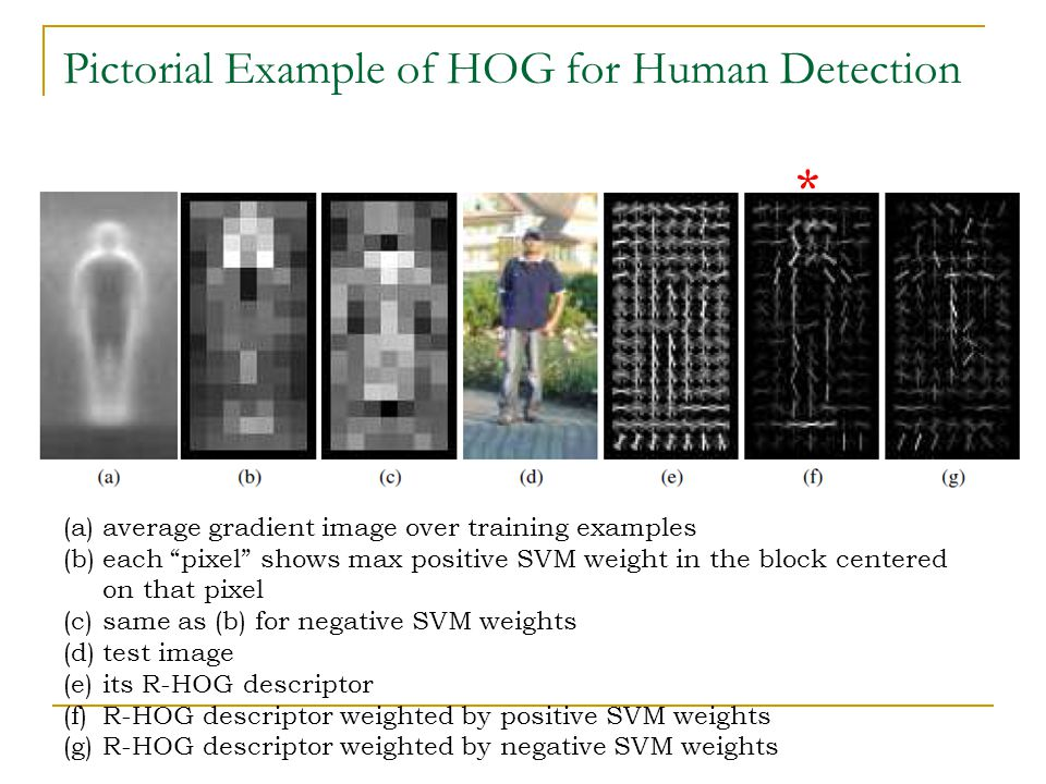Pictorial Example of HOG for Human Detection