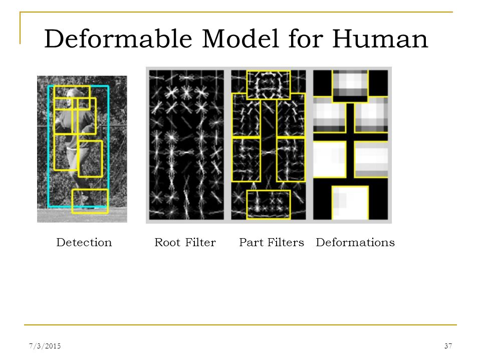 Deformable Model for Human