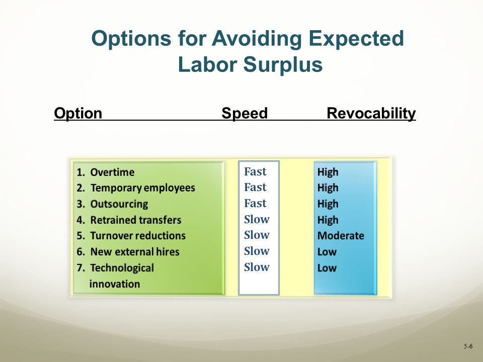 Options for Avoiding Expected Labor Surplus