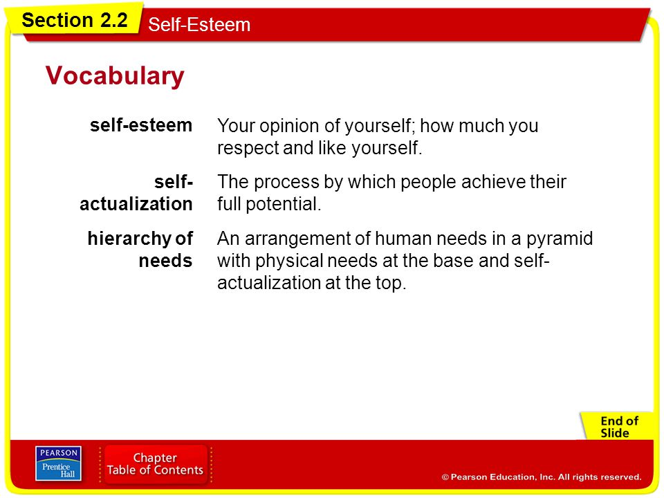 Vocabulary self-esteem Your opinion of yourself; how much you
