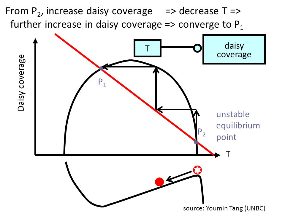 From P2, increase daisy coverage => decrease T =>