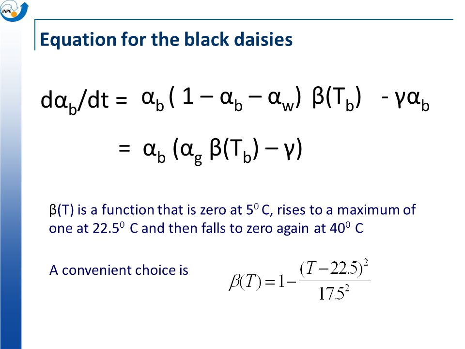 Equation for the black daisies