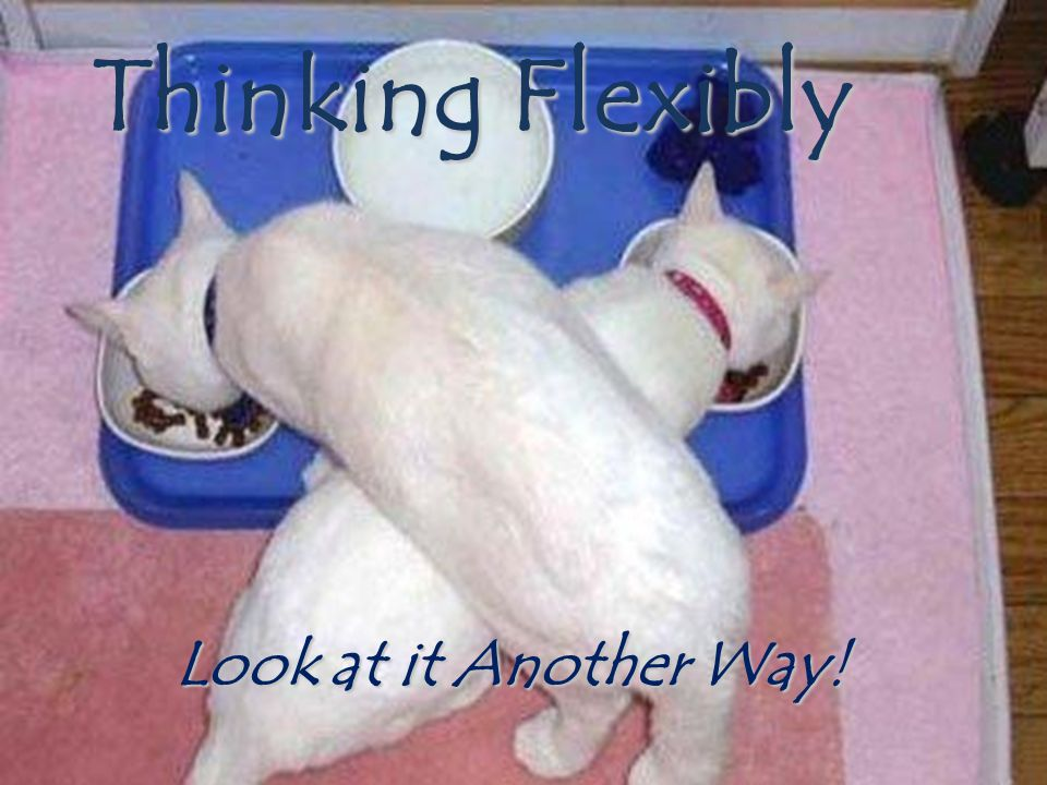 Thinking Flexibly Look at it Another Way!