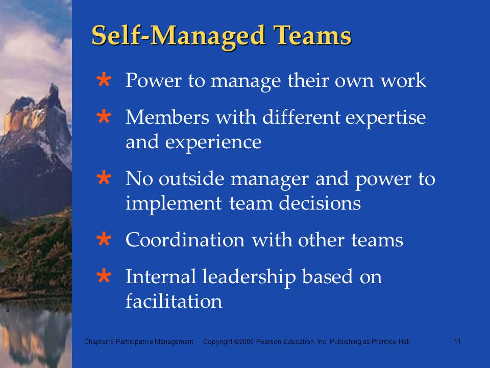 Self-Managed Teams Power to manage their own work