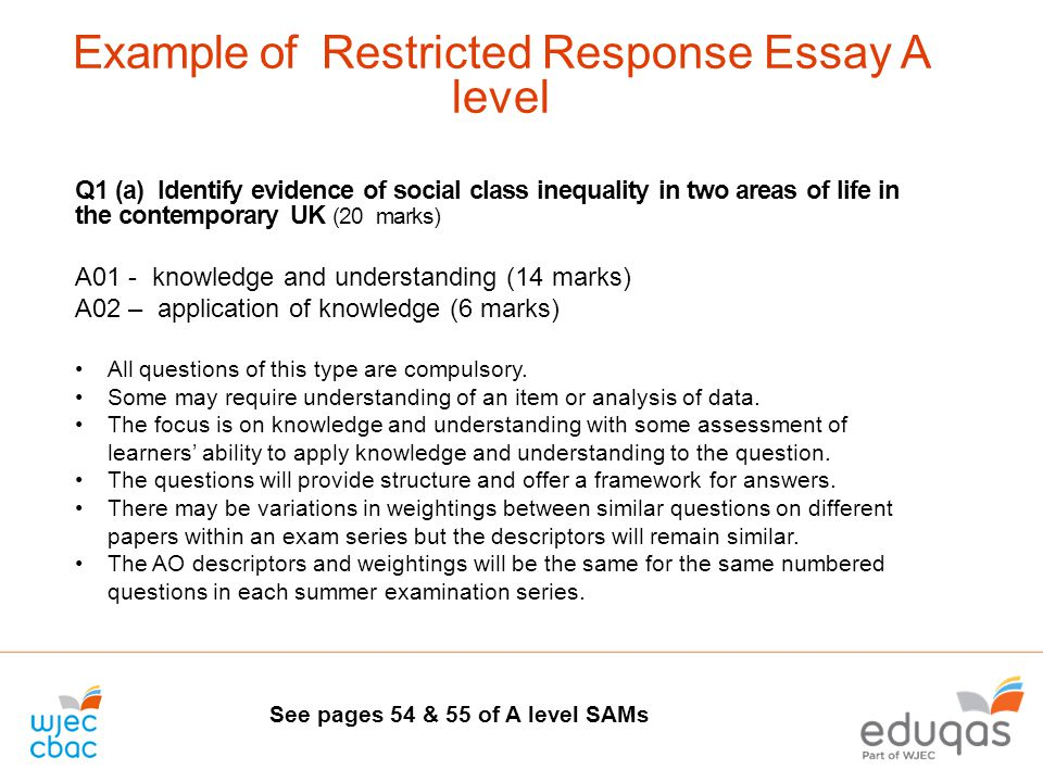 example of a response essay what the student sees literature  example of restricted response essay a level example of a response essay