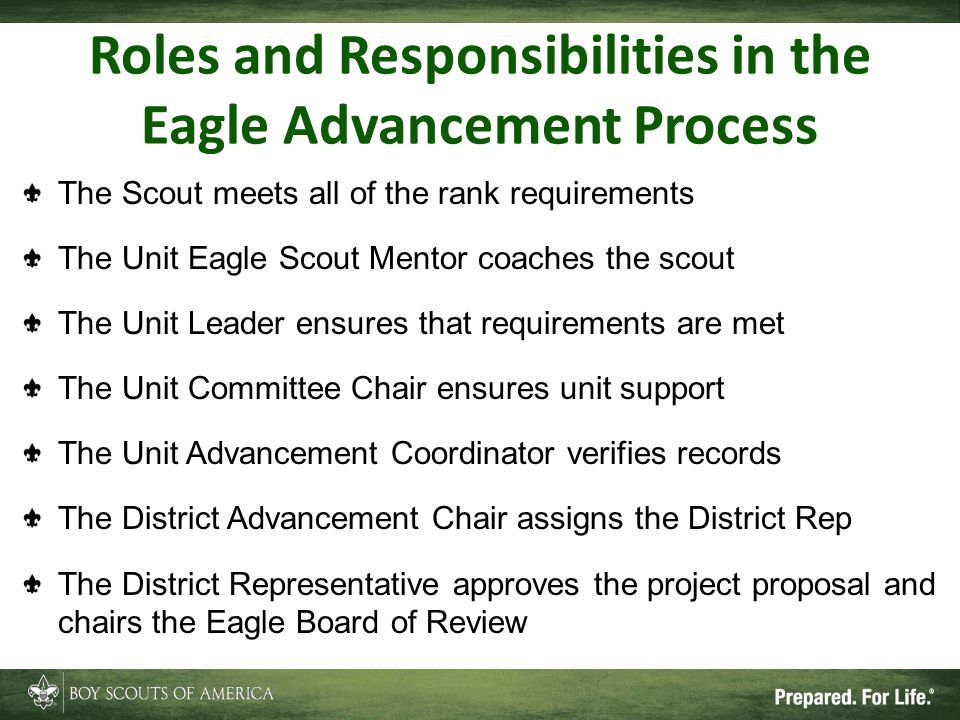 Roles and Responsibilities in the Eagle Advancement Process