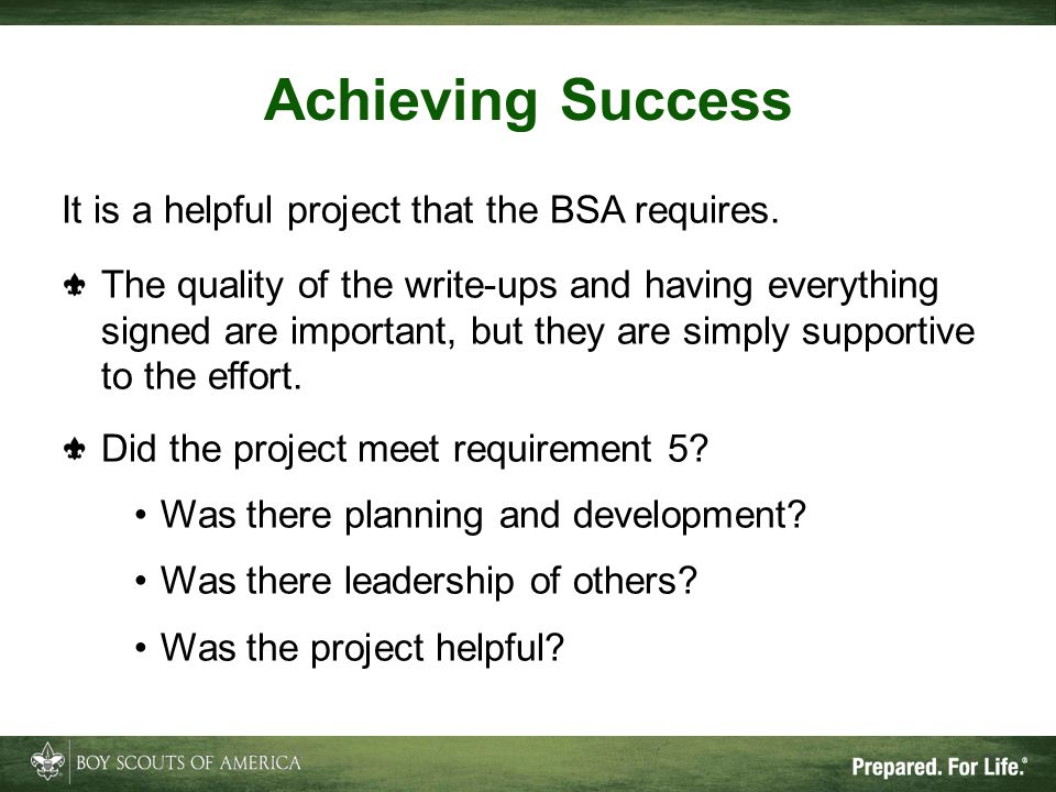 Achieving Success It is a helpful project that the BSA requires.