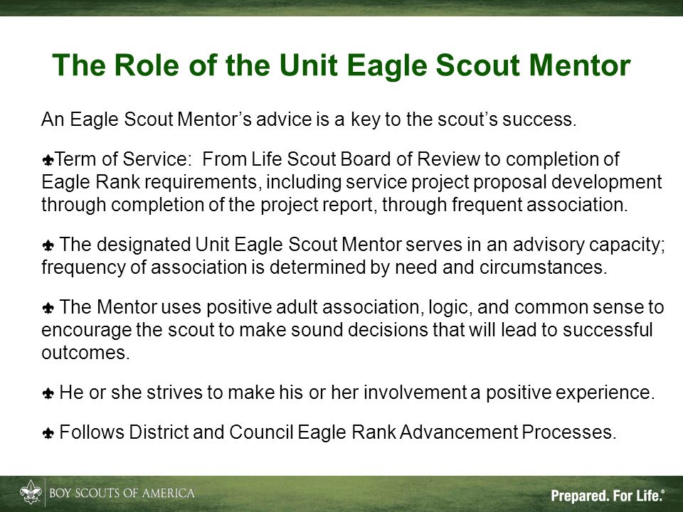 The Role of the Unit Eagle Scout Mentor
