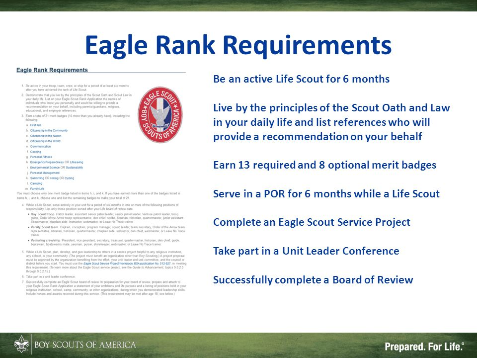 Eagle Rank Requirements