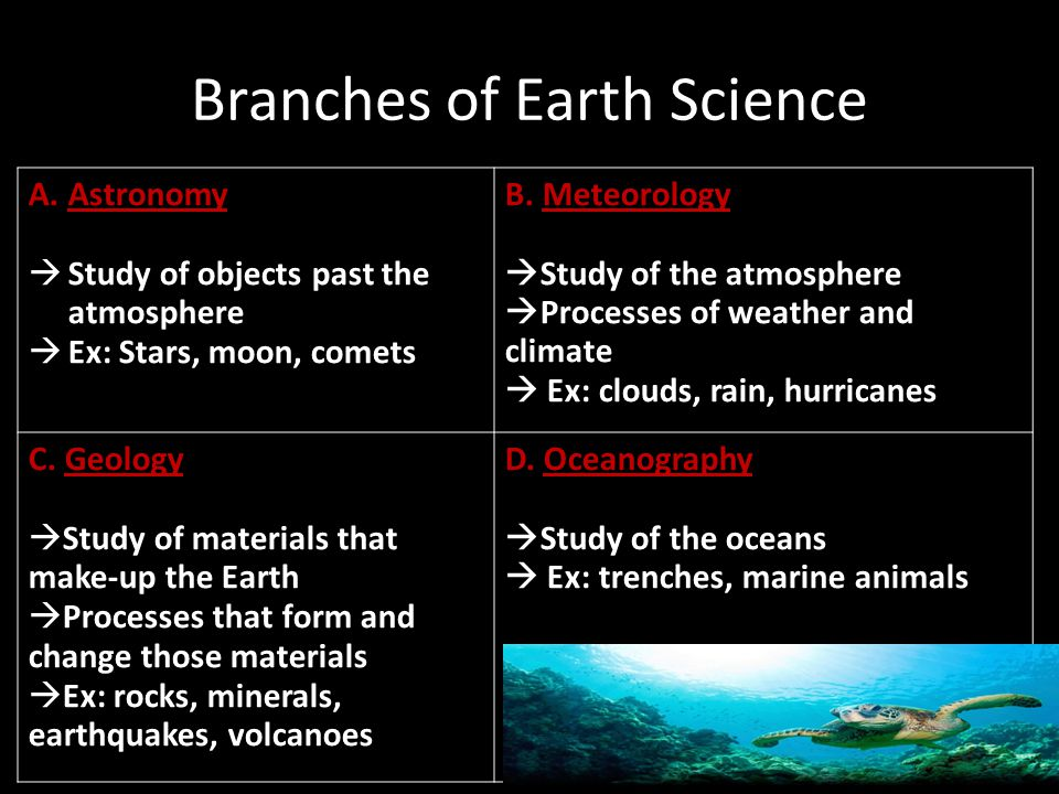 branches of science Fast facts for science teachers™ and students : branches of science note: not all branches are included aerodynamics: the study of the motion of gas on.