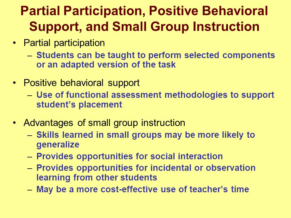 Partial Participation, Positive Behavioral Support, and Small Group Instruction