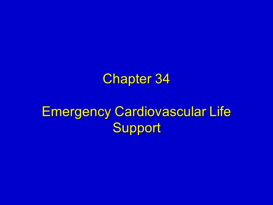 chapter 34 american life in the Americanah chapter 2 summary & analysis from litcharts  chapter 32 chapter 33 chapter 34 chapter 35 chapter 36 chapter 37  and her successful american life,.