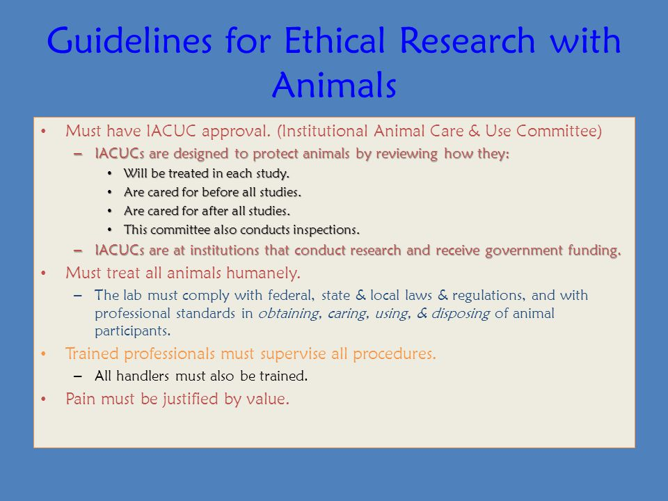 Guidelines for Ethical Research with Animals