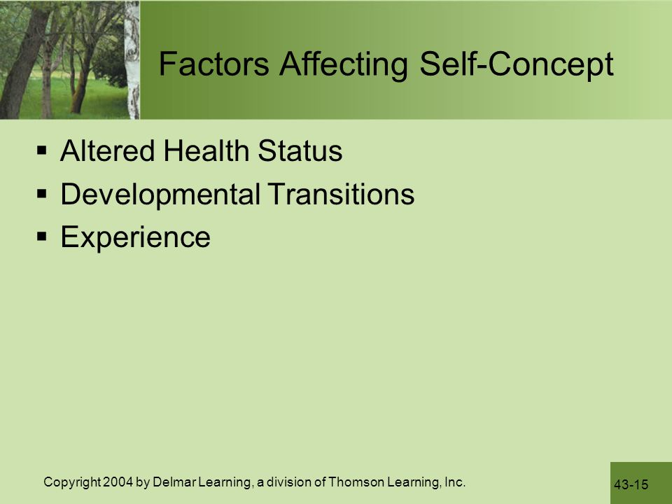 Factors Influencing The Development Of Self-esteem