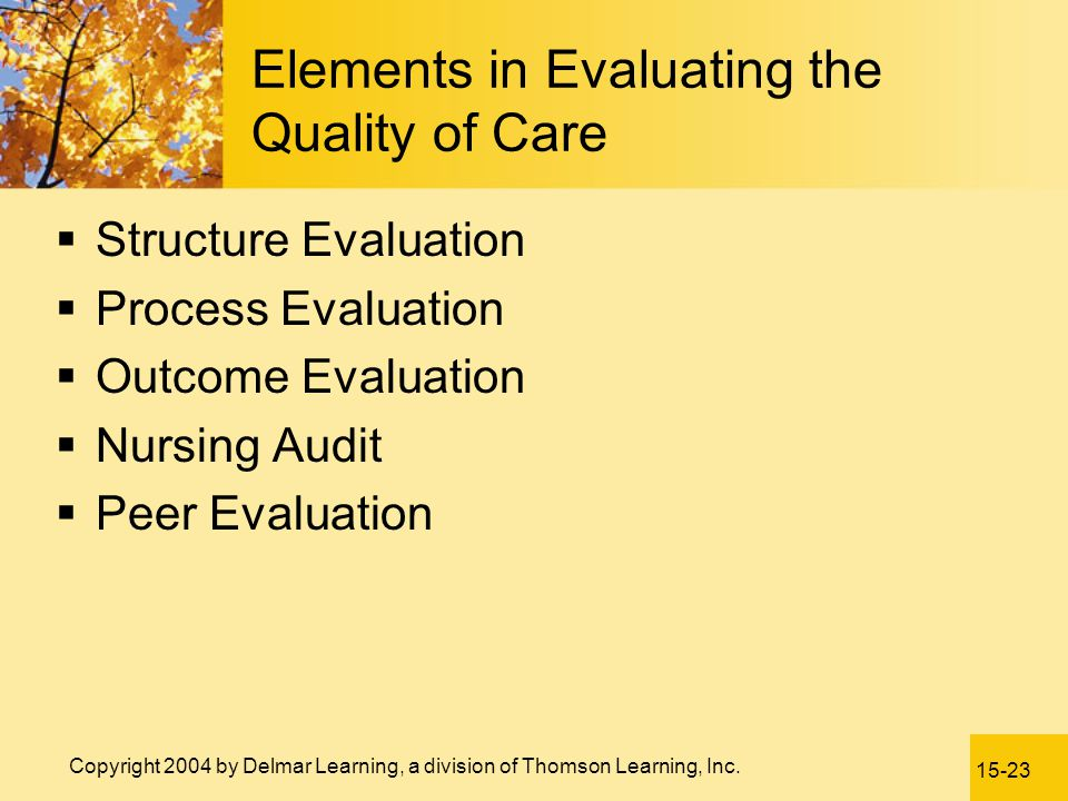 Elements in Evaluating the Quality of Care