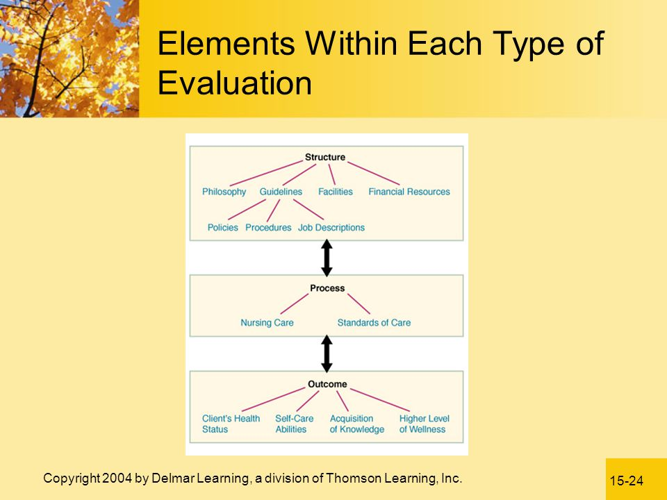 Elements Within Each Type of Evaluation