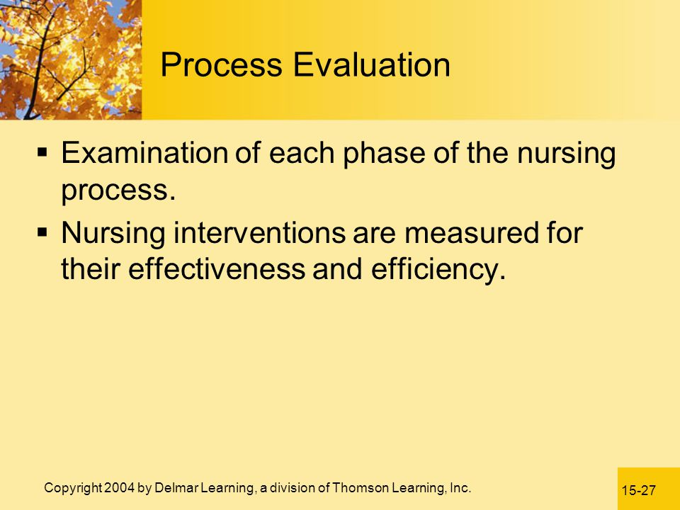 Process Evaluation Examination of each phase of the nursing process.