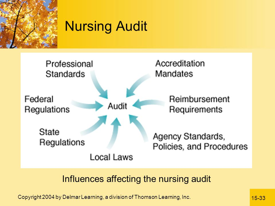 Influences affecting the nursing audit