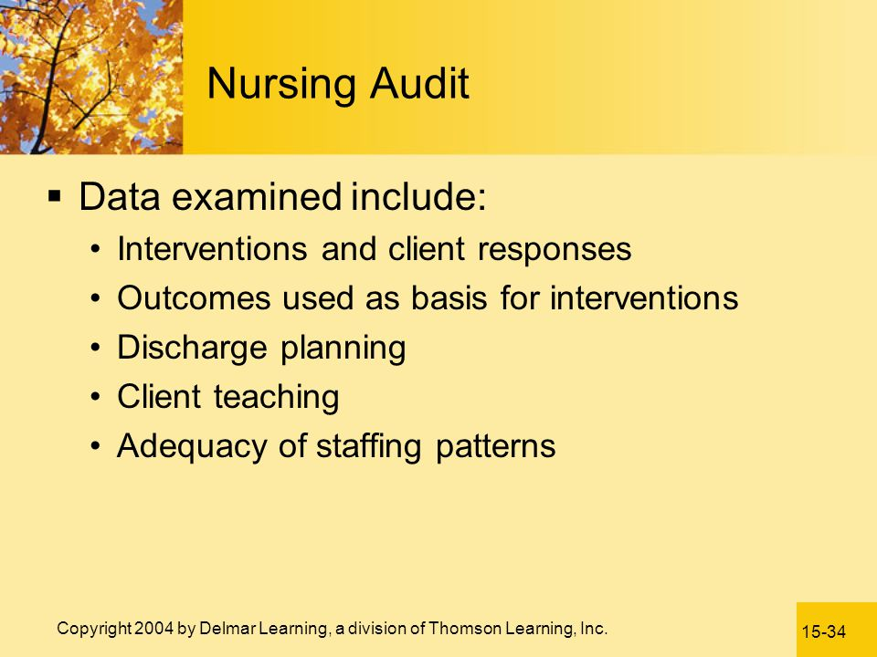 Nursing Audit Data examined include: