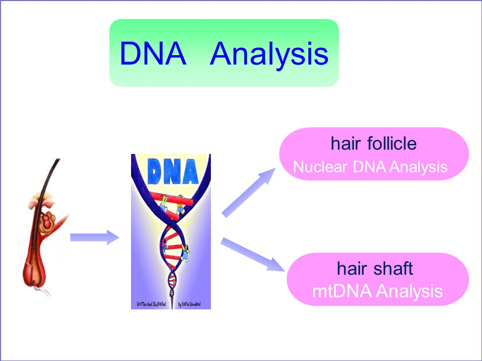an analysis of dna Analyzing dna report is the most important part once you have done with your dna report you can have a good analysis of the report with our experts who can take you.