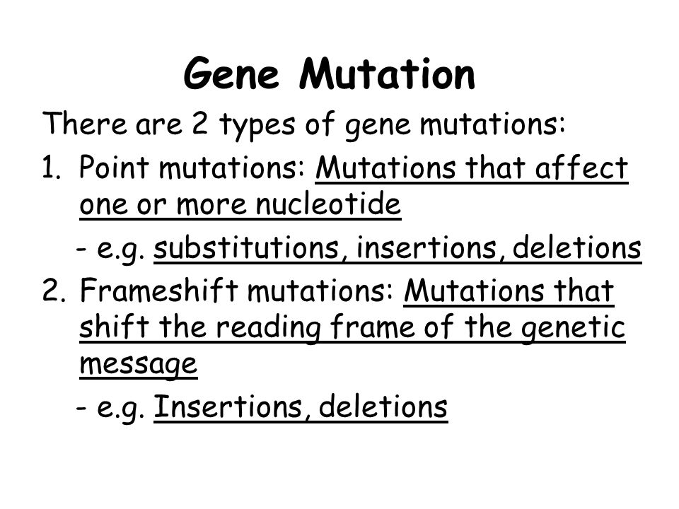 Gene Mutation There are 2 types of gene mutations: