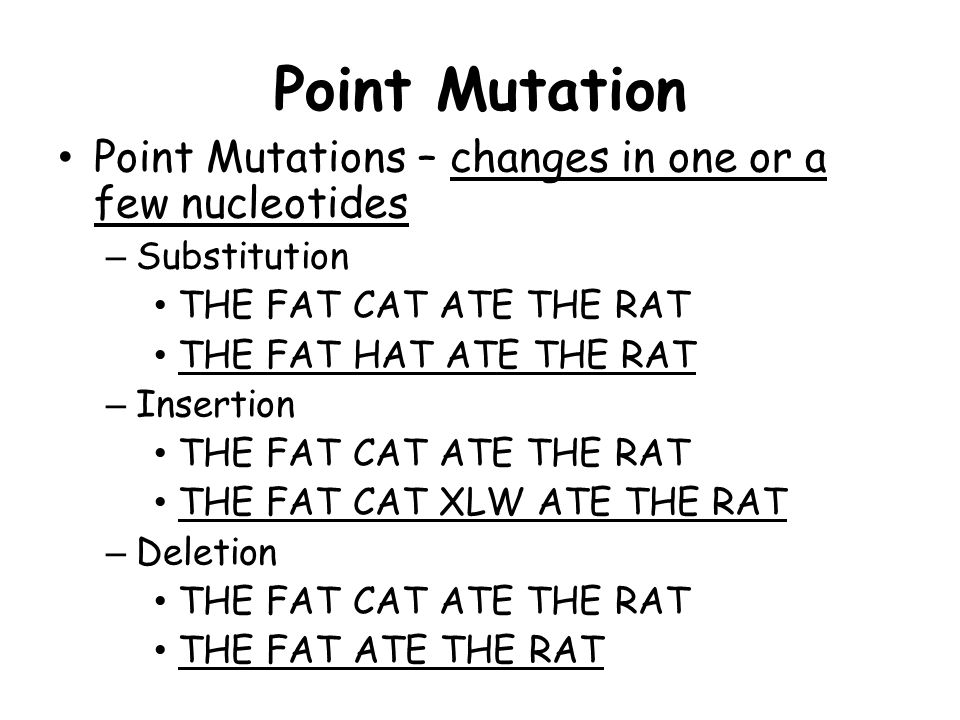 Point Mutation Point Mutations – changes in one or a few nucleotides