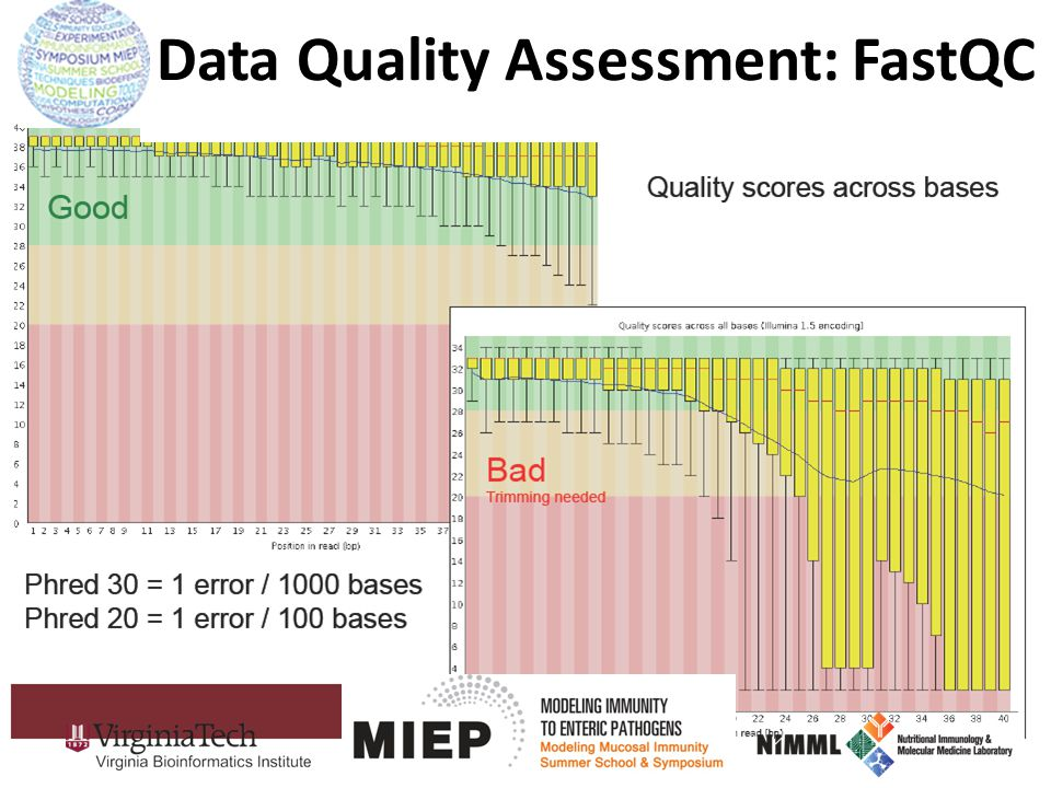 Data Quality Assessment: FastQC