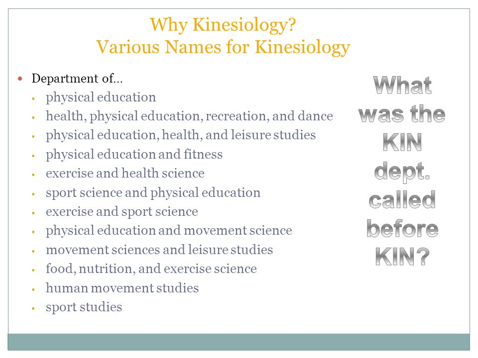 physical education kinesiology projects Projects how we can help you home » programs » bachelors in kinesiology » physical education teaching option masters in kinesiology adapted physical.