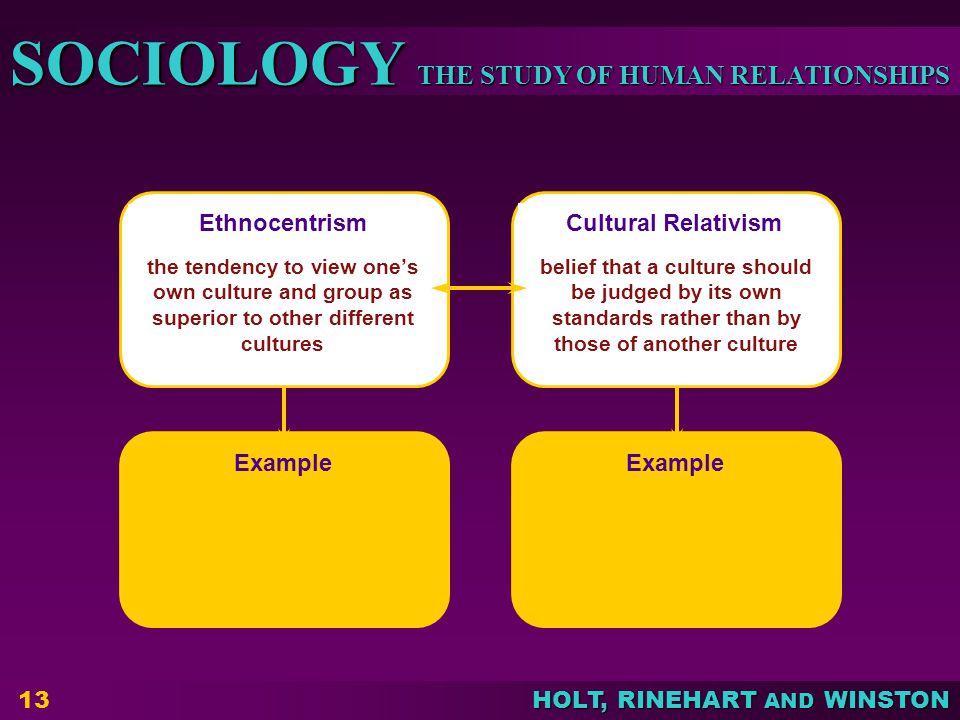 Ethnocentrism Cultural Relativism Example Example