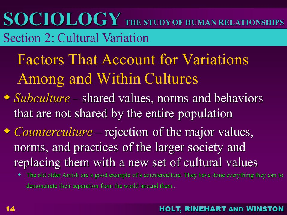 examples of culture as norms and values in society Organizational culture reflects the values,  some organizations may have a significant part of their culture in written form for example,  the norms of a.