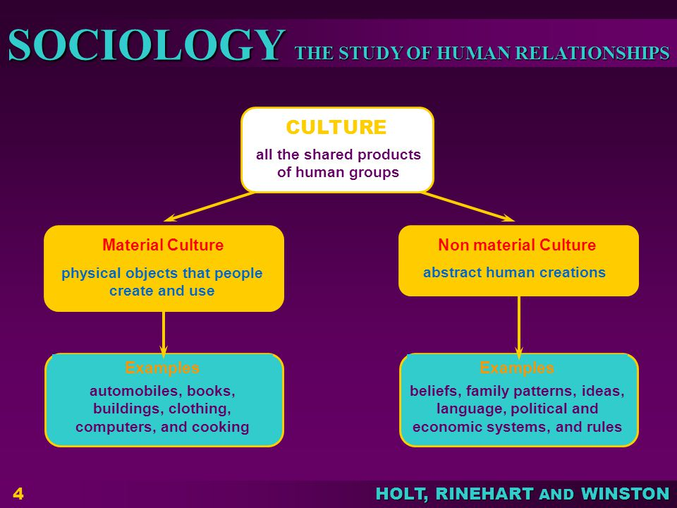 CULTURE Material Culture Non material Culture Examples Examples