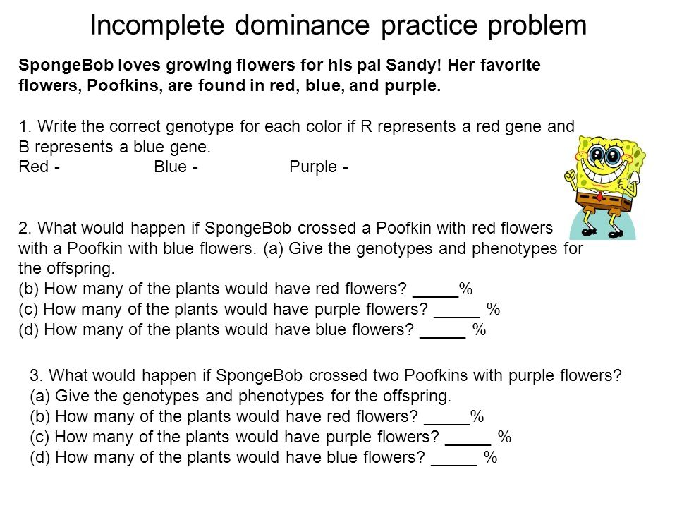 Genetics Practice Problems #2 Writing Alleles