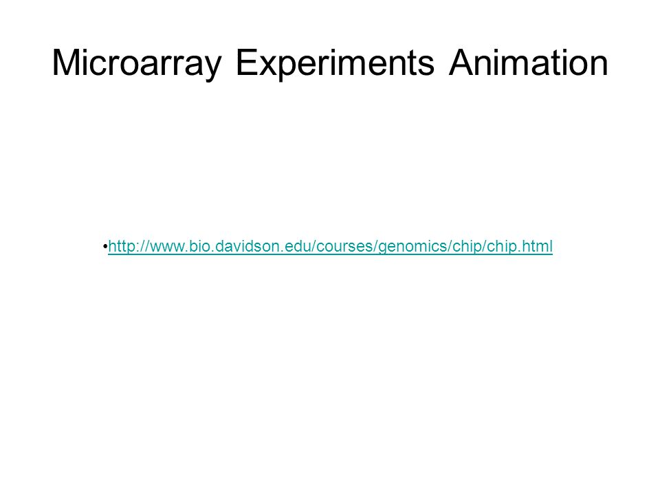 Microarray Experiments Animation