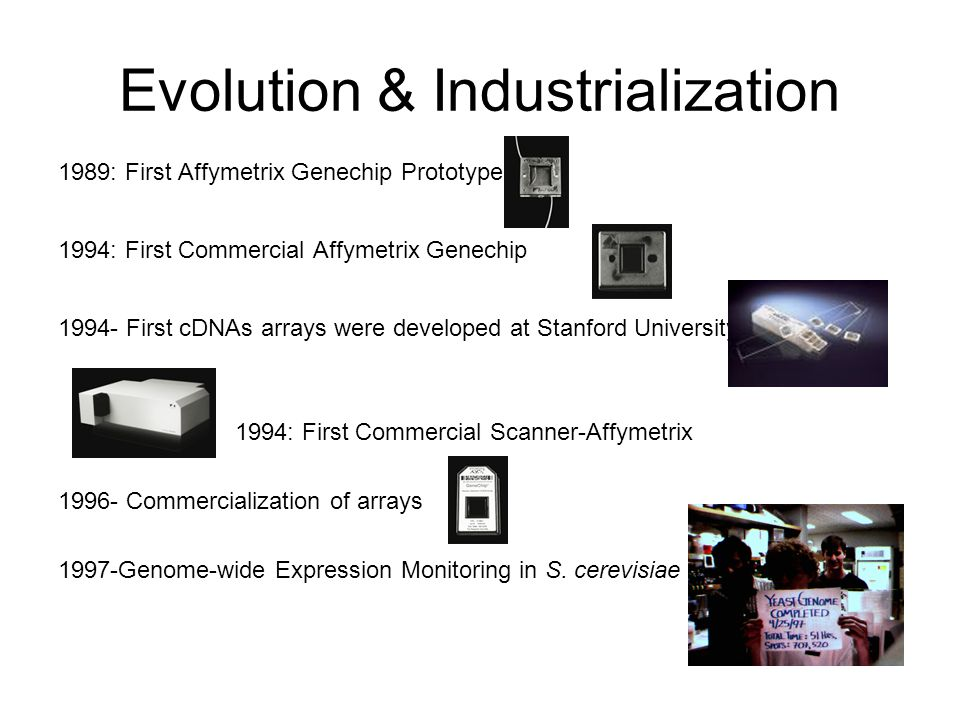 Evolution & Industrialization