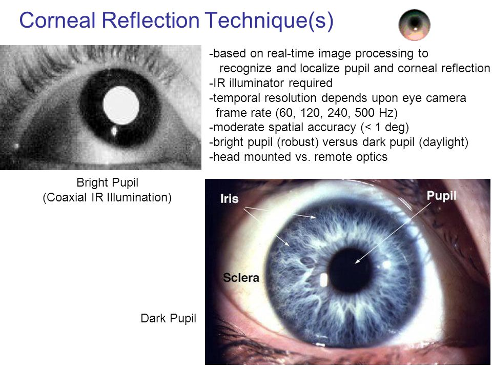Survey of Eye Tracking Techniques - ppt video online download