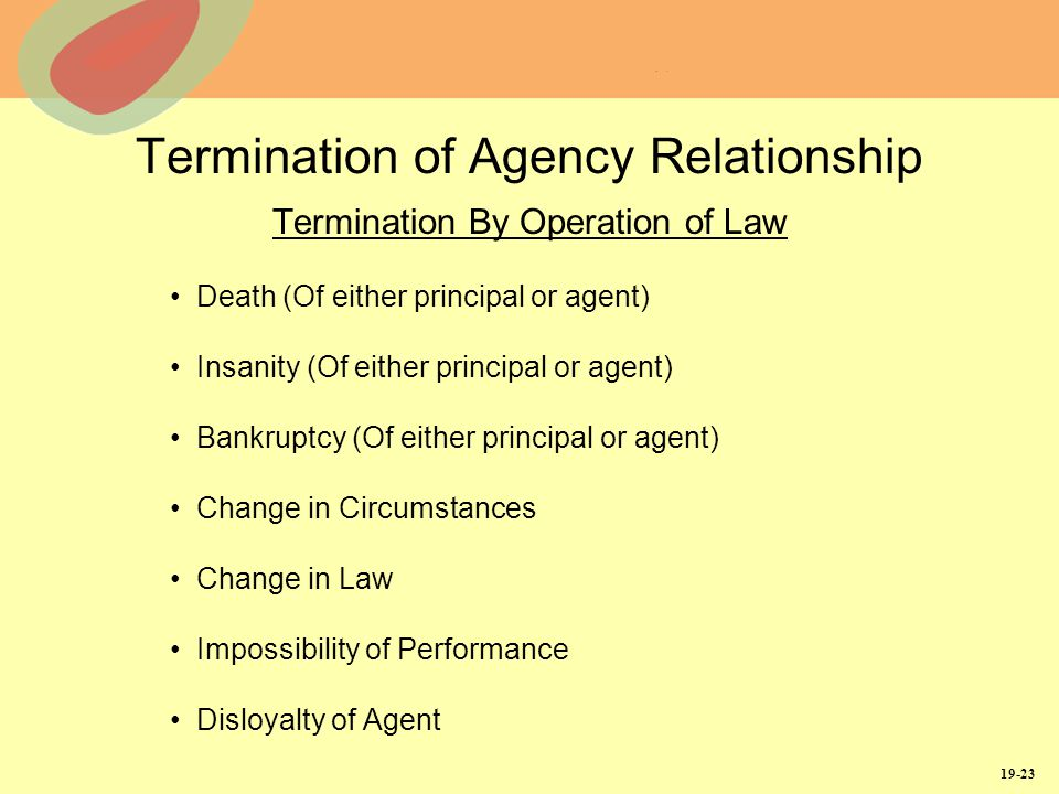 termination of agency essay Agency notes 1  wrongful termination of an agency oremployment contract the termination of an agency contract in  writing a strong essay online.