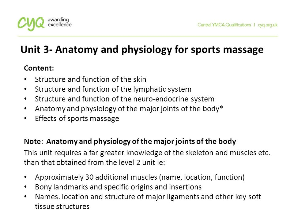 Lujo Anatomy And Physiology Qualification Ornamento - Imágenes de ...